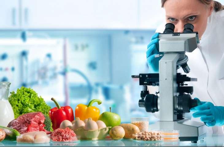 Gıda Güvenliğinde Başarıyı Etkileyen Faktörler Nelerdir?
